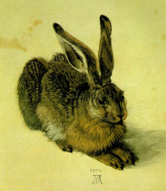 Albrecht Durer, The Hare, 1502; watercolor and gouache on paper